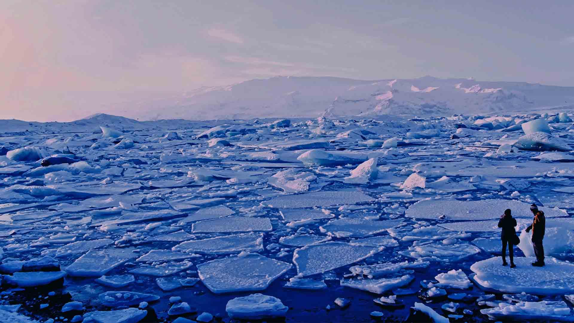 Il riscaldamento globale ha colpito in particolare le regioni artiche e antartiche