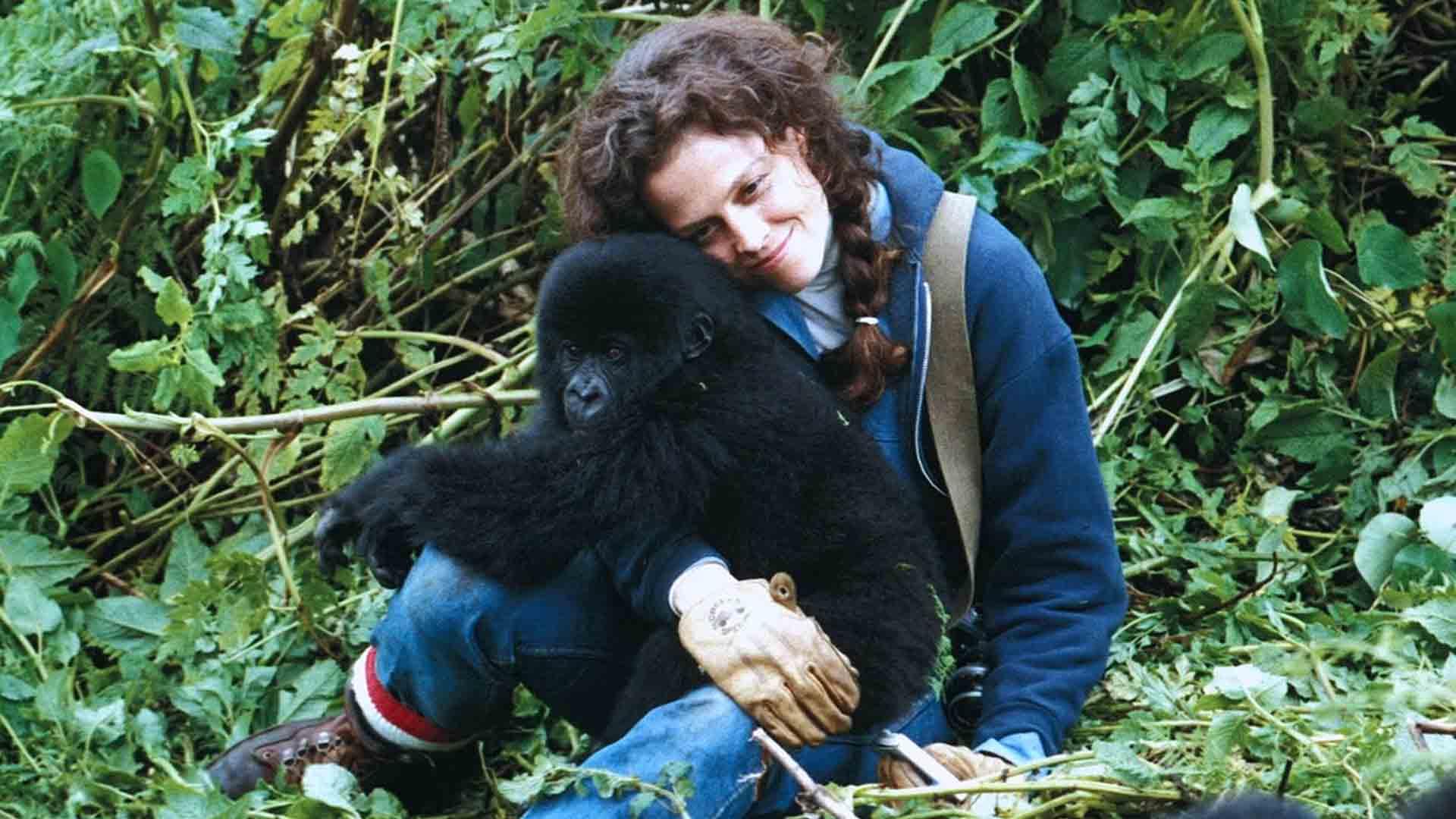 Sigourney Weaver interpretò Dian Fossey nel film Gorilla nella nebbia