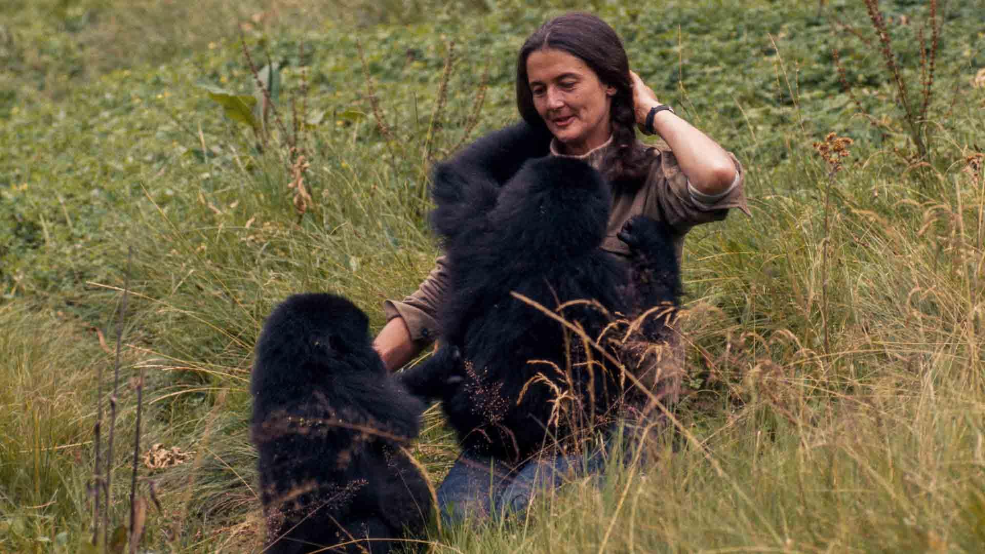 Dian Fossey ha dedicato la vita a proteggere i gorilla