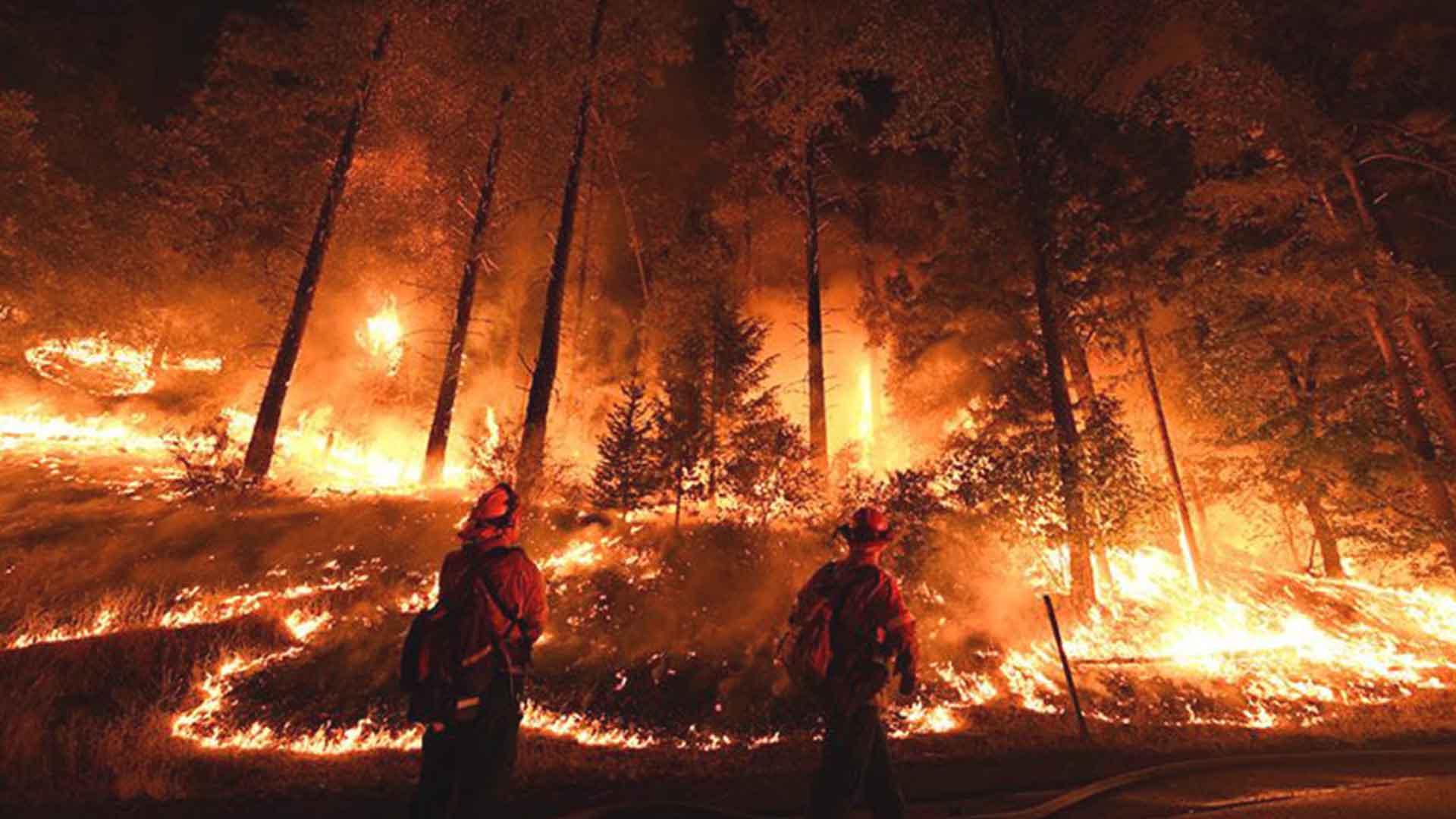 3 milioni di ettari di foresta sono in fiamme nel Circolo polare artico
