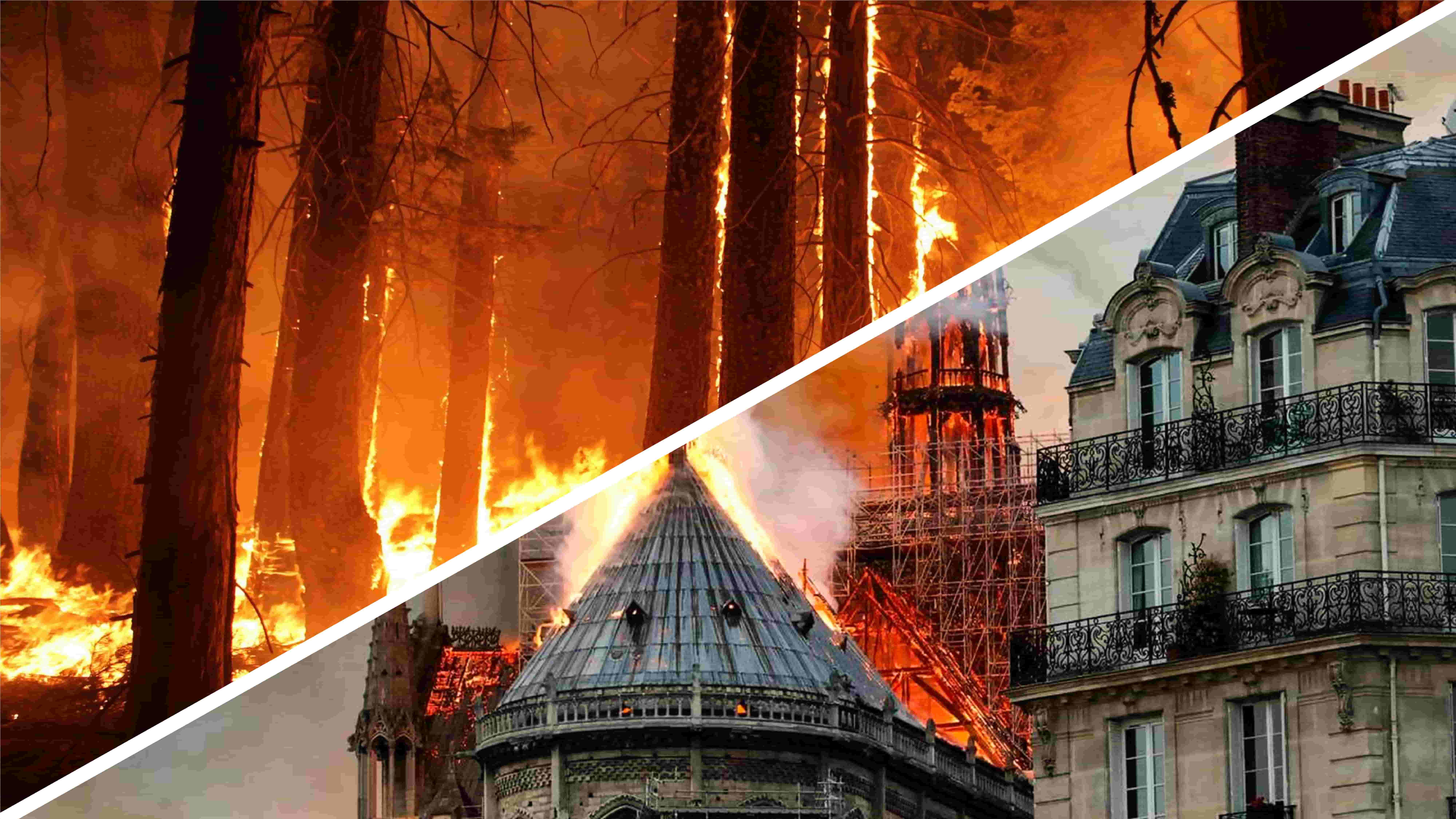 Perché Notre-Dame ci commuove e la Siberia in fiamme no?