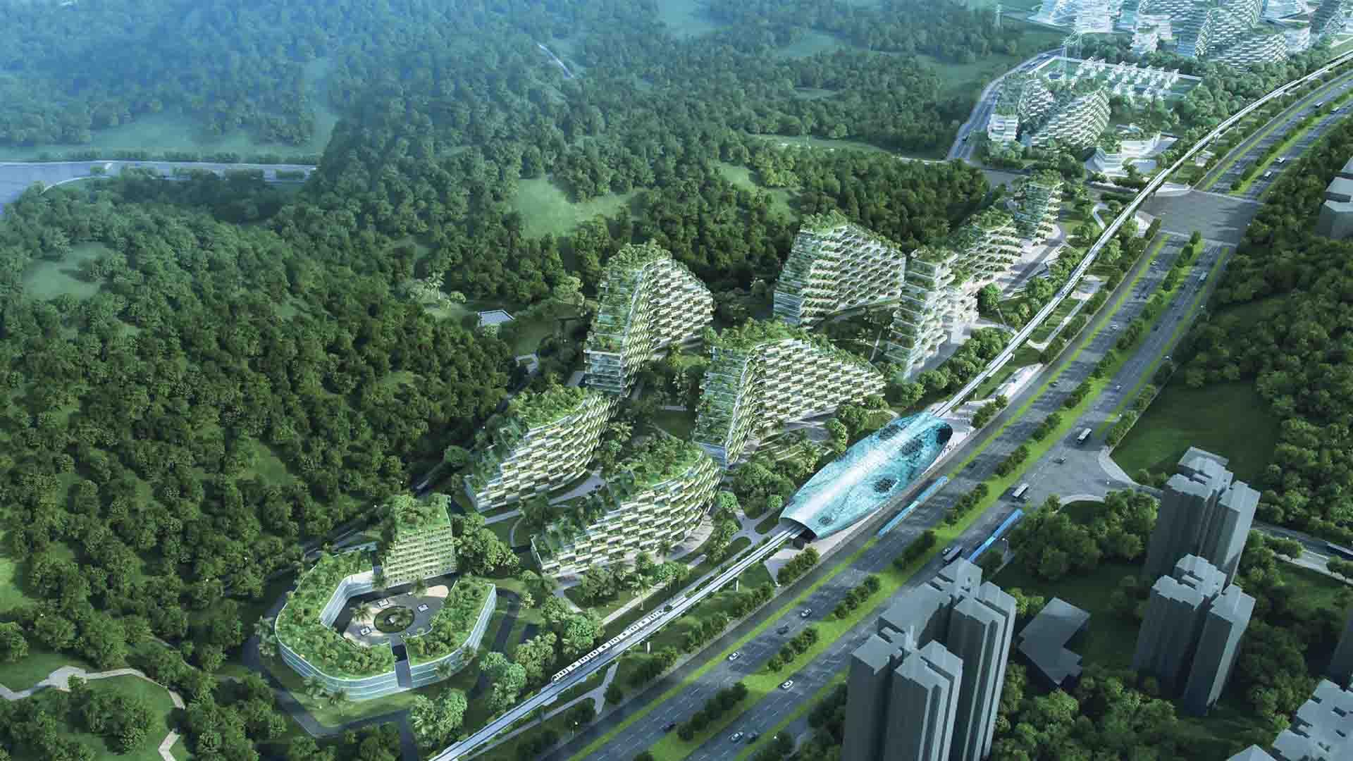 Nel 2023 la Cina diventerà il più grande consumatore di energia rinnovabile