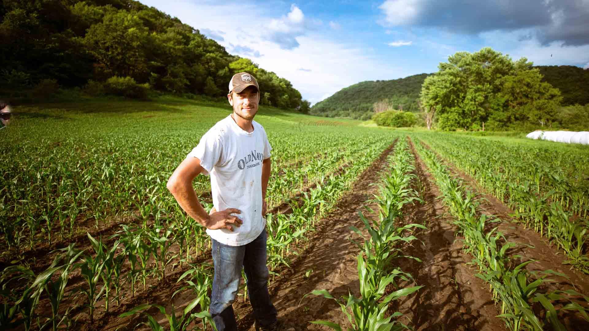 Sempre più giovani tornano a lavorare la terra