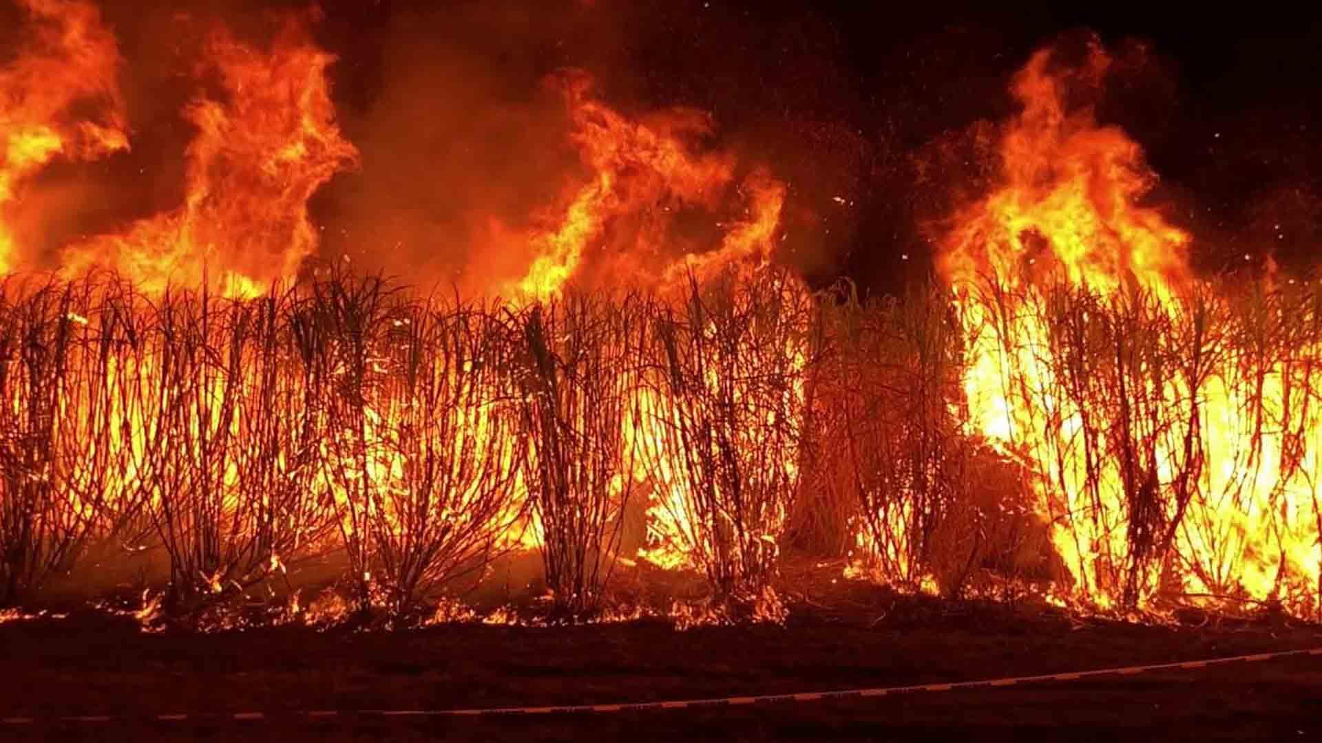 Gli incendi in Australia sono più grandi che in Siberia
