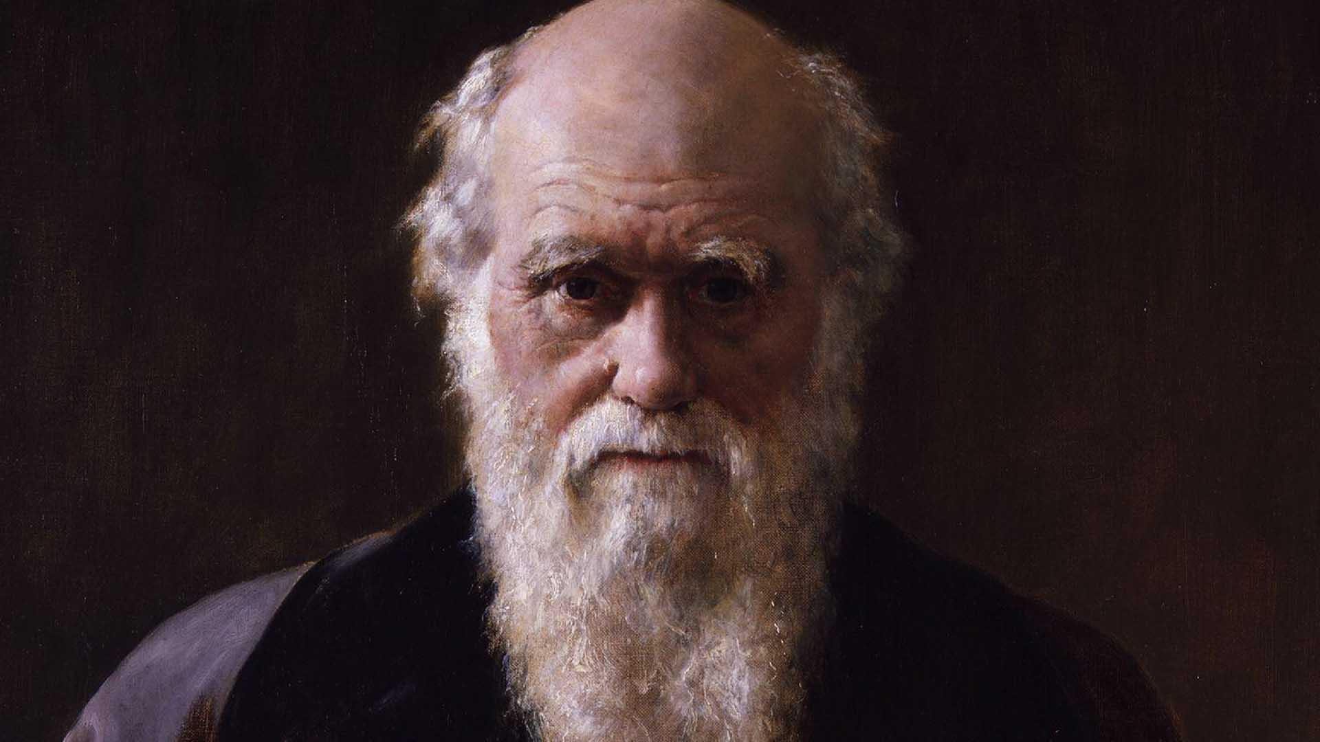 charles darwin razzismo