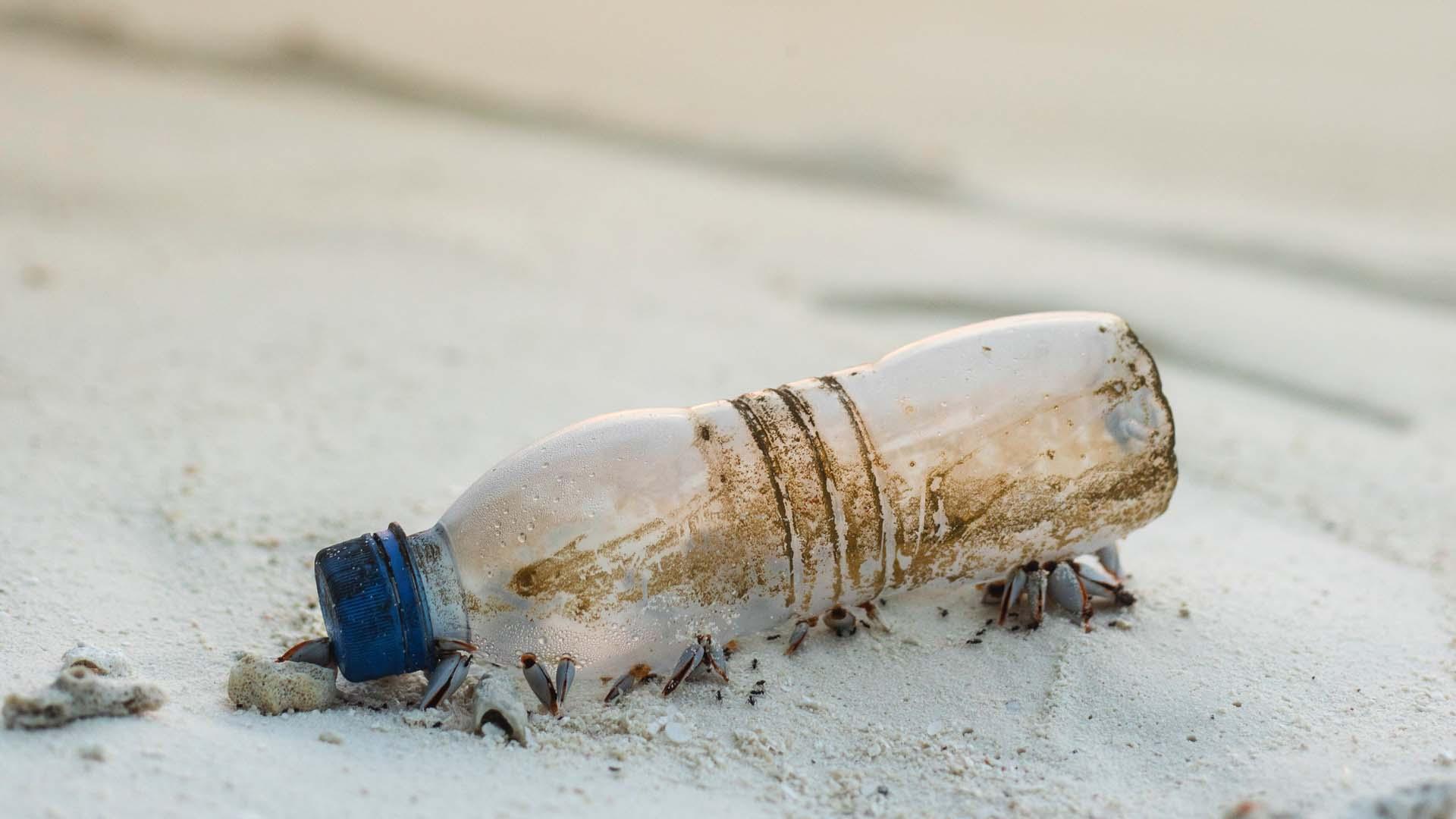 Il Mediterraneo sarà soffocato dalla plastica in 20 anni