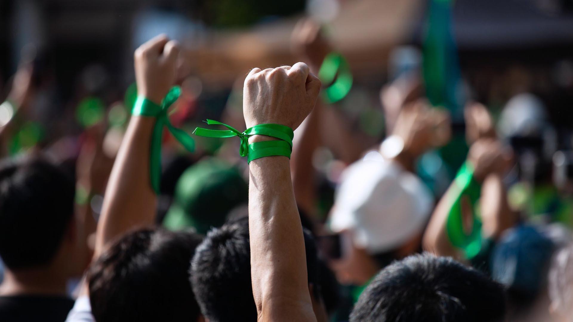 I Verdi italiani sono quasi scomparsi